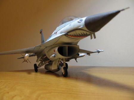 F-16 Wild Weasel [HM19]