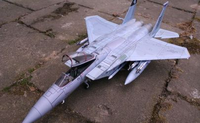 F-15C EAGLE   Halinski