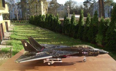 Czarny Kocur z Fly Model