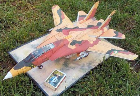 Grumman F-14A ,,Tomcat'' (نیروی هوایی ارتش جمهوری اسلامی ایران)