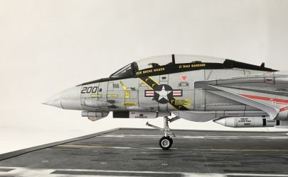 F-14 TOMCAT JOLLY ROGERS
