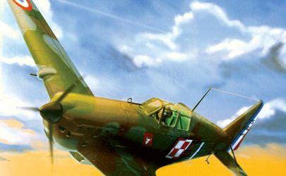 Morane-Saulnier 406C1 - WAK 1:33