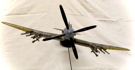 Hawker Typhoon WAK