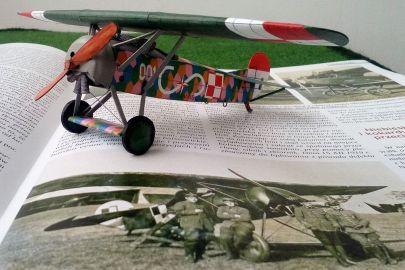 Fokker E. V  - 7 Eskadra Bojowa. Lewandówka - Lwów - 1919 r.